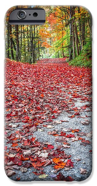 Walk Paths iPhone Cases - Natures Red Carpet iPhone Case by Edward Fielding