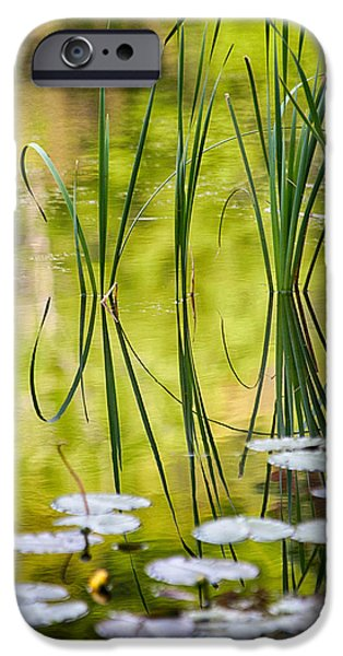 Reflections Of Nature iPhone Cases - Natures Stillness iPhone Case by Karol  Livote