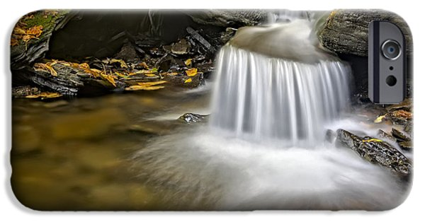 Fall Foliage iPhone Cases - Natures Stream iPhone Case by Susan Candelario