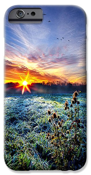 Frost Photographs iPhone Cases - Natures Way iPhone Case by Phil Koch