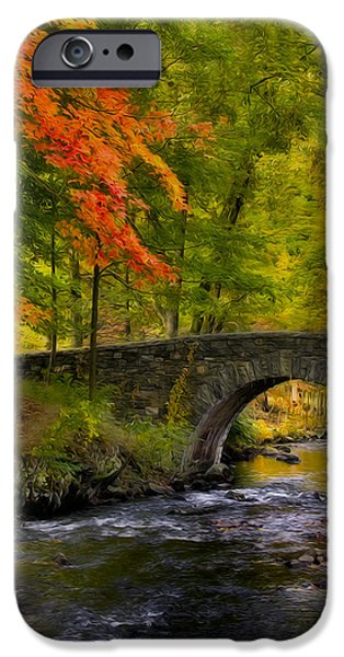 Fall Foliage iPhone Cases - Natures Way iPhone Case by Susan Candelario