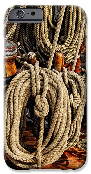 Maine Bounty iPhone Cases - Nautical Knots 17 Oil iPhone Case by Mark Myhaver