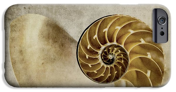 Geometrical iPhone Cases - Nautilus Shell iPhone Case by Carol Leigh