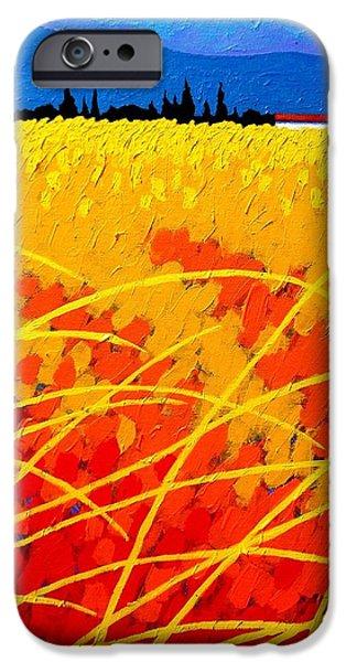 Near Carcassonne  iPhone Case by John  Nolan