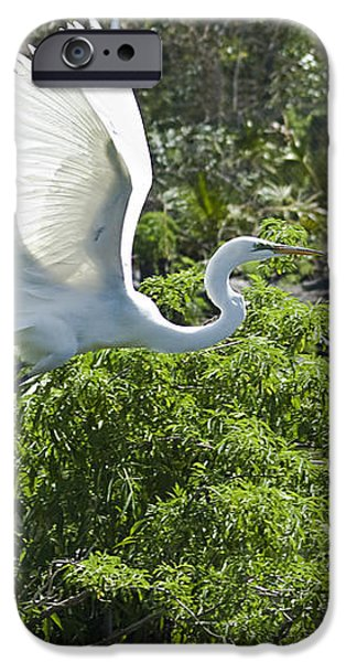 Need More Branches iPhone Case by Carolyn Marshall