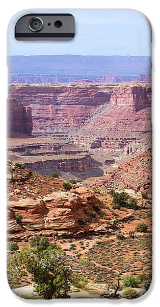 Needles Grand Canyon iPhone Case by Adam Jewell