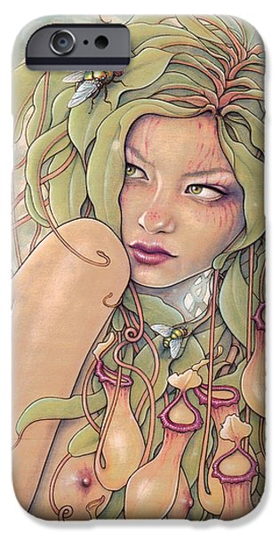 Pitcher iPhone Cases - Nepenthes  iPhone Case by Fay Helfer