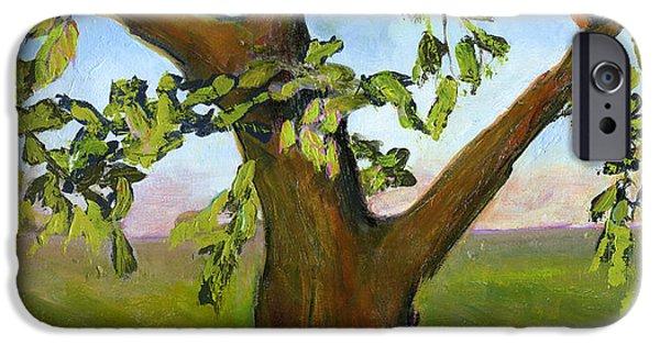 Robin iPhone Cases - Nesting Tree iPhone Case by Blenda Studio