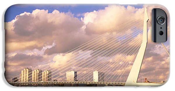 Swans... iPhone Cases - Netherlands, Holland, Rotterdam iPhone Case by Panoramic Images