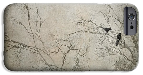 Raven iPhone Cases - Nevermore... iPhone Case by Amy Weiss