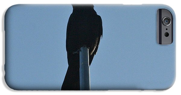 Crows Pyrography iPhone Cases - Nevermore iPhone Case by DUG Harpster