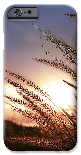 new day iPhone Case by Laura  Fasulo
