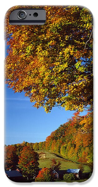 Turning Leaves iPhone Cases - New England Autumn iPhone Case by Rafael Macia