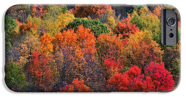 New England Autumn Scenes iPhone Cases - New England Foliage Burst iPhone Case by Thomas Schoeller