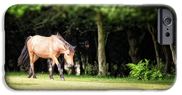 Nature Shot iPhone Cases - New Forest pony iPhone Case by Jane Rix