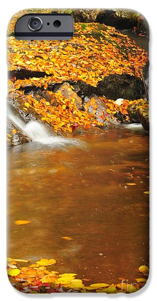 Catherine Reusch Daley iPhone Cases - New Hampshire Stream iPhone Case by Catherine Reusch  Daley