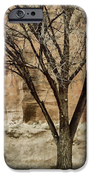 Red Rock iPhone Cases - New Mexico Winter iPhone Case by Carol Leigh
