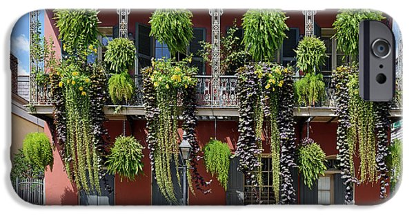 Balcony iPhone Cases - New Orleans City Jungle iPhone Case by Christine Till