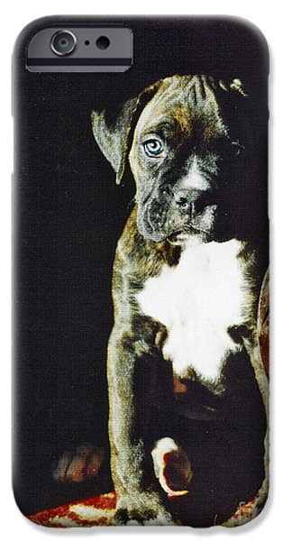 Best Sellers -  - Boxer Digital Art iPhone Cases - New to the World iPhone Case by Judy Wood