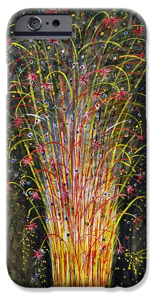 Inauguration iPhone Cases - New York: Fire Works, 1883 iPhone Case by Granger