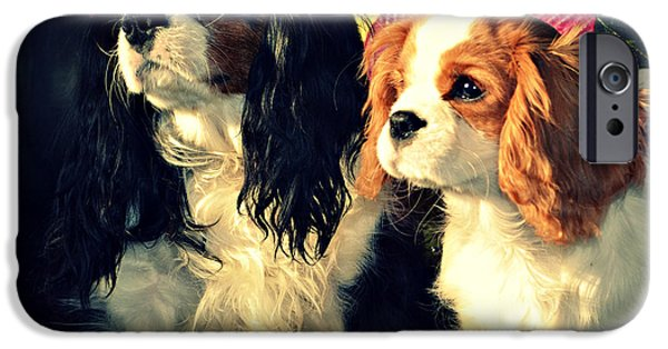 Recently Sold -  - Duchess iPhone Cases - Nigel and Timothy iPhone Case by Cyryn Fyrcyd