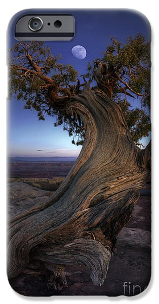 Award iPhone Cases - Night Guardian of the Valley iPhone Case by Marco Crupi