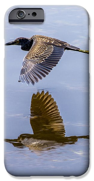 J N Ding Darling National Wildlife Refuge iPhone Cases - Night Heron Fly By 2 iPhone Case by Nancy L Marshall