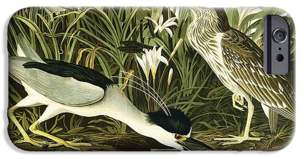 Animal Cards Drawings iPhone Cases - Night Heron or Lua Bird iPhone Case by John James Audubon