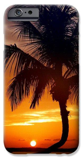 Islamorada iPhone Cases - Night of the Sun iPhone Case by Karen Wiles