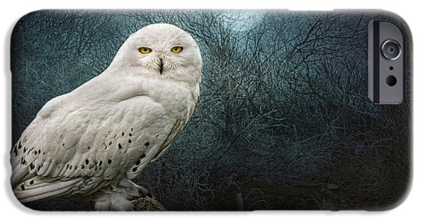 Eerie iPhone Cases - Night Owl iPhone Case by Brian Tarr