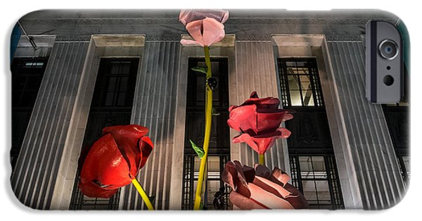 Frist Center iPhone Cases - Night Roses iPhone Case by Glenn DiPaola