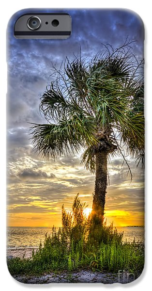 Mangrove iPhone Cases - Nightfall iPhone Case by Marvin Spates