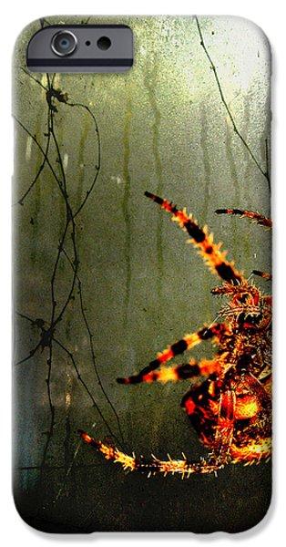 Nightmares iPhone Case by Karen Slagle
