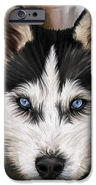 Husky iPhone Cases - Nikki iPhone Case by David Wagner