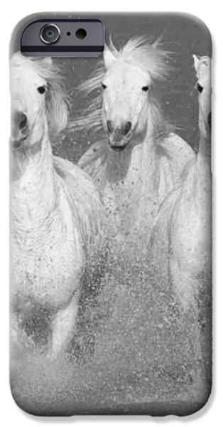 Nine White Horses Run iPhone Case by Carol Walker