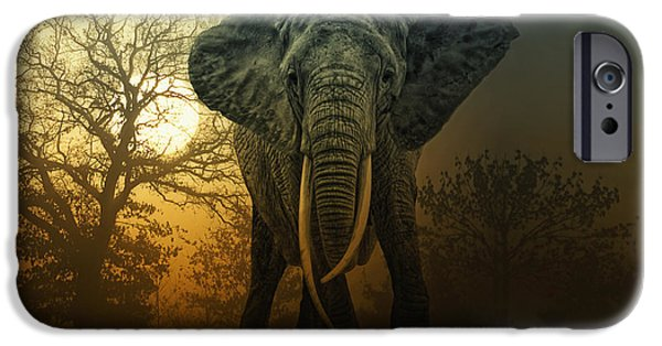 Power iPhone Cases - No Bull In A China Shop iPhone Case by Joachim G Pinkawa