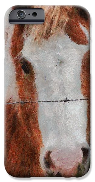 No Fences iPhone Case by Jeff Kolker