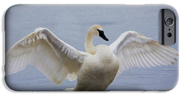 Mist iPhone Cases - Trumpeter Swan - Stretch iPhone Case by Patti Deters