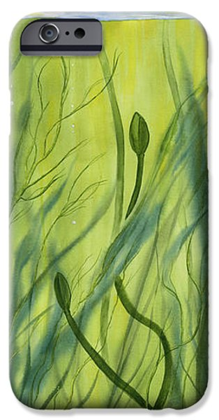 Michael Paintings iPhone Cases - No Mud No Lotus iPhone Case by Michael Donenfeld