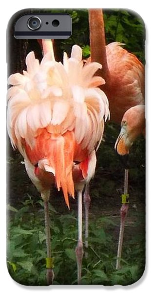 Nebraska iPhone Cases - No Nothing Seems Out of Place iPhone Case by Caryl J Bohn