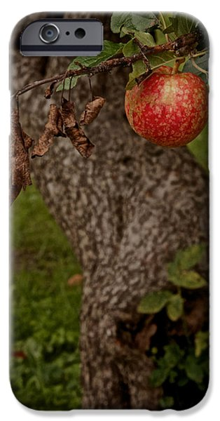 Gnarly iPhone Cases - No Sin iPhone Case by Odd Jeppesen