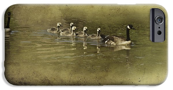 Mother Goose iPhone Cases - No Time for Stragglers iPhone Case by Diane Schuster