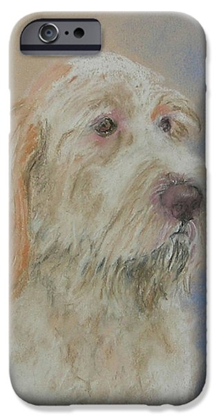 Puppy Pastels iPhone Cases - Noble Hunter iPhone Case by Cori Solomon