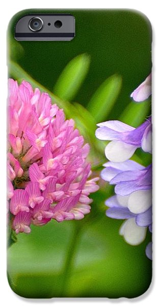 Non Identical Twins iPhone Case by Marty Koch