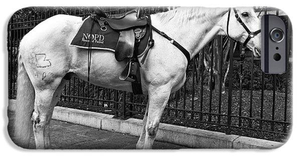 Law Enforcement Art iPhone Cases - NOPD Horse mono iPhone Case by John Rizzuto