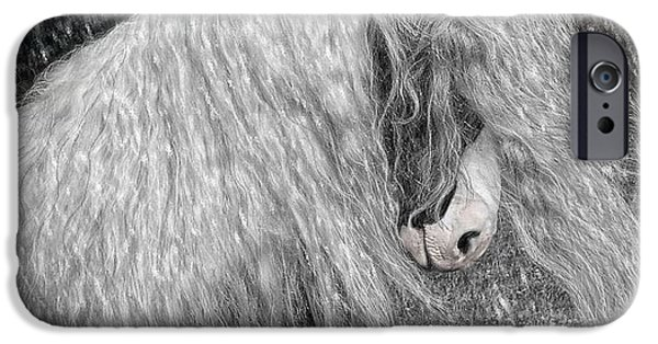 Gypsy Digital Art iPhone Cases - Nor easter iPhone Case by Fran J Scott