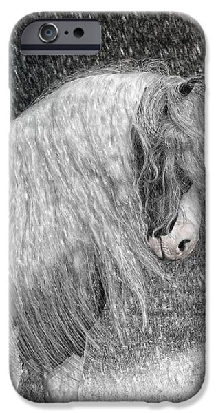 Nor easter iPhone Case by Fran J Scott
