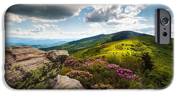 Best Sellers -  - Dave iPhone Cases - North Carolina Blue Ridge Mountains Roan Rhododendron Flowers NC iPhone Case by Dave Allen