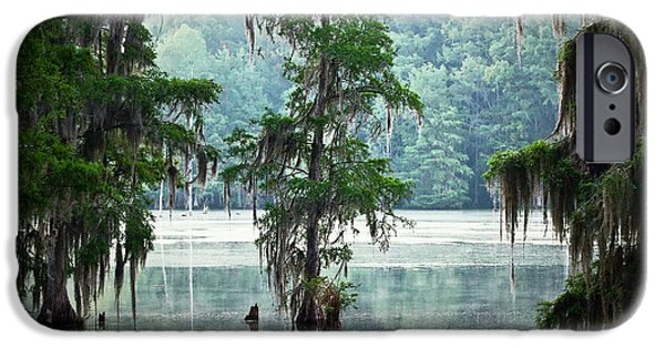 Eerie iPhone Cases - North Florida Cypress Swamp iPhone Case by Rich Leighton