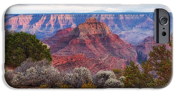 Grand Canyon iPhone Cases - North Rim Grand Canyon Arizona Desert Southwest Solitude at Cape Royal iPhone Case by Silvio Ligutti